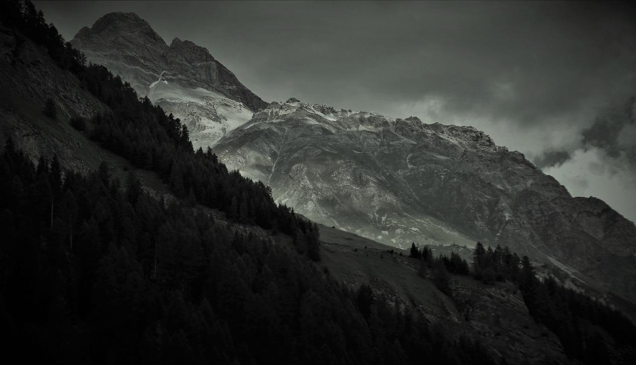 灰色の写真