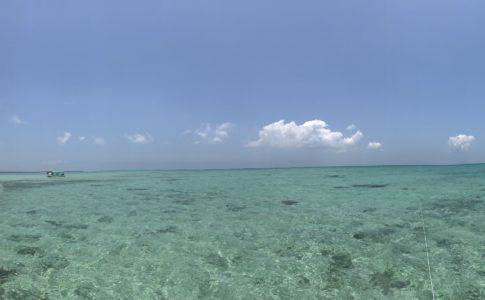 地上から見た浜島