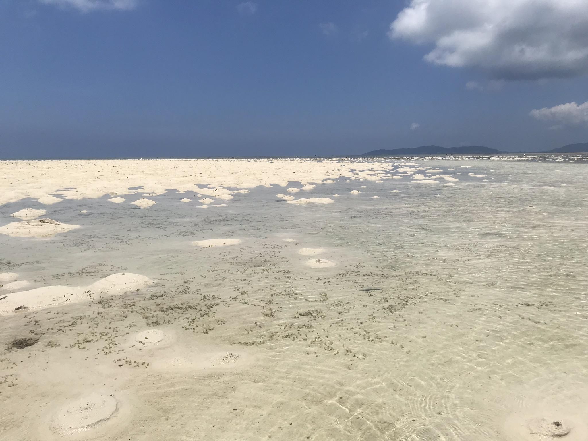 コンドイ浜の海