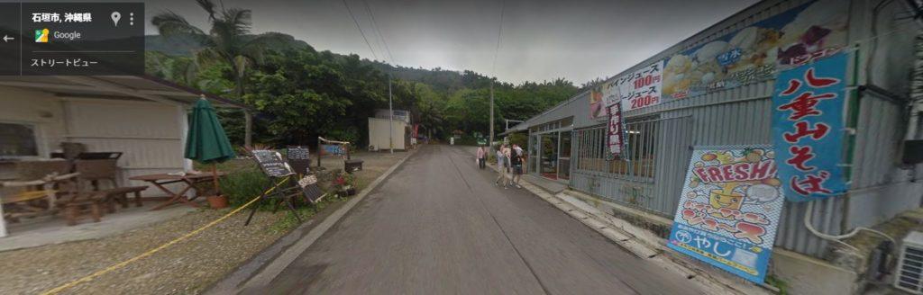 ヤエヤマヤシ群落前の道路