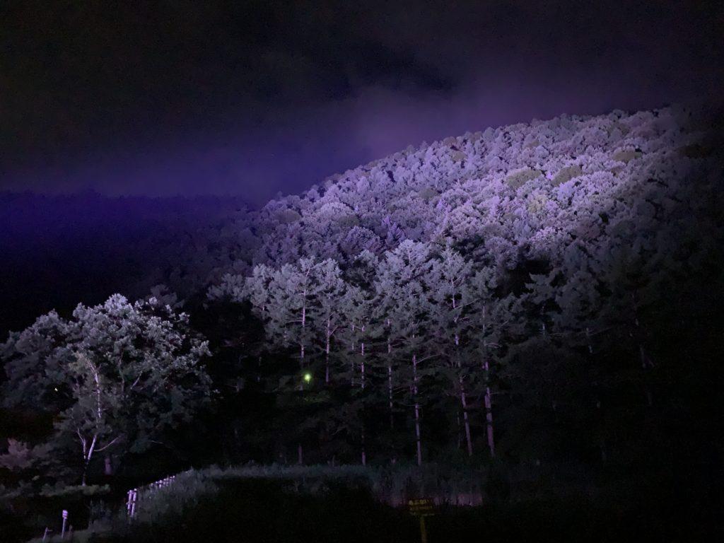 西の河原露天風呂 夜景