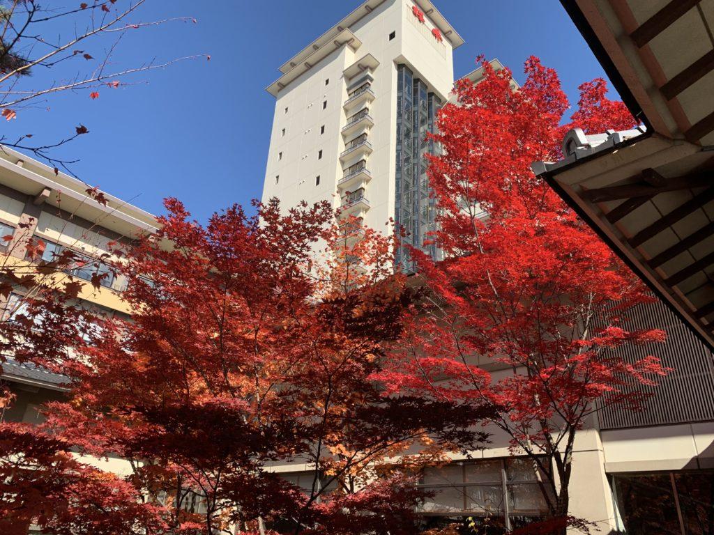 ホテル櫻井の紅葉