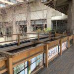 ホテル櫻井の手湯