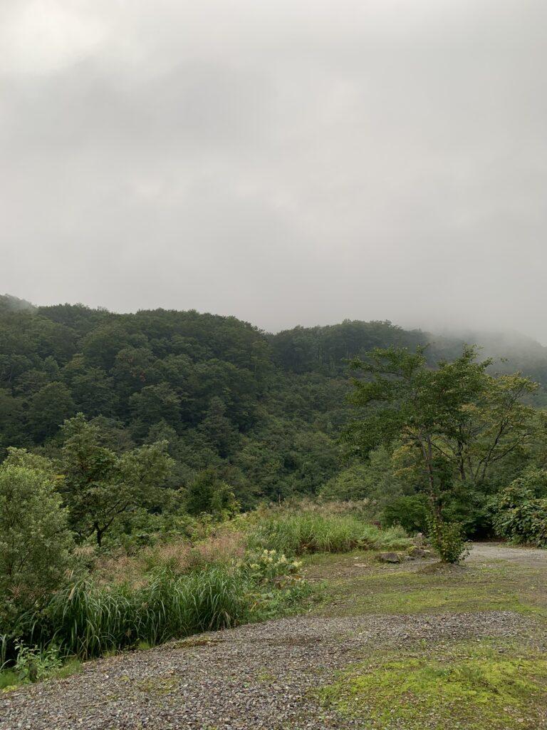 360°木々に囲まれた山々の景色