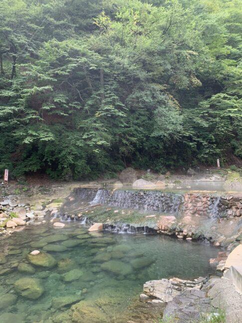 自然豊かな緑に囲まれた川
